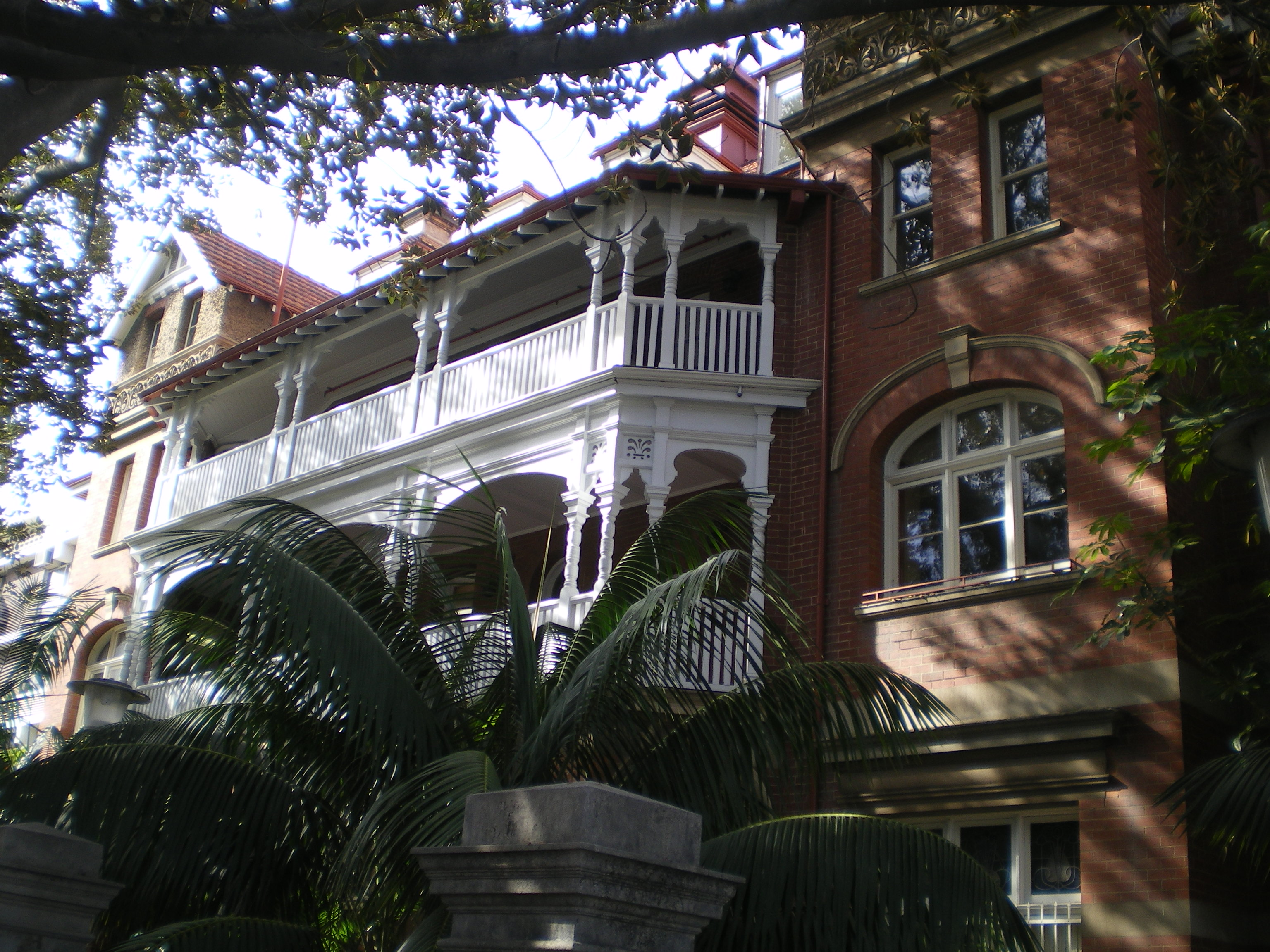 Kirkman House and fig tree