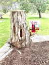 Elements from the 'Happy Tree' (Mr Gnome carving) in the nature playspace